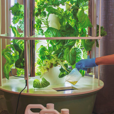 Adding water to Tower Garden Home unit reservoir